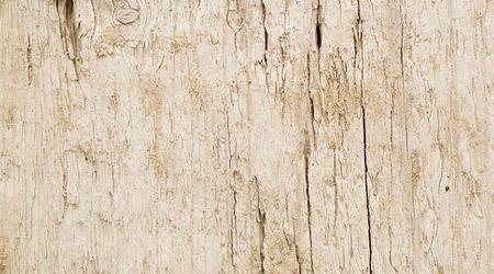 Текстура Светлое Дерево  calgarycatalog