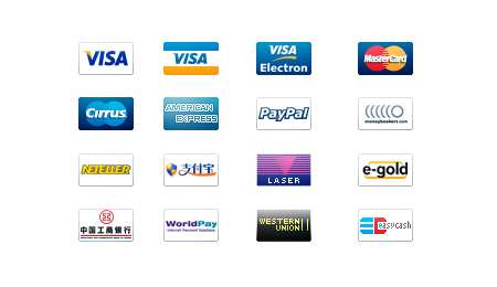 new credit card  ecommerce icon