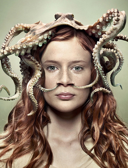 octopus four