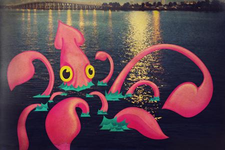 vintage squid illustration