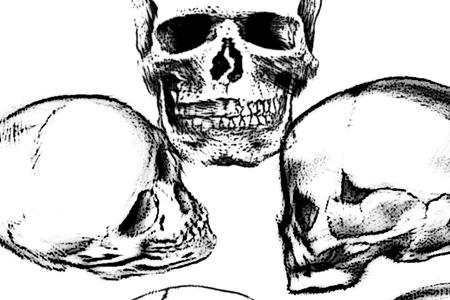 head skull brush