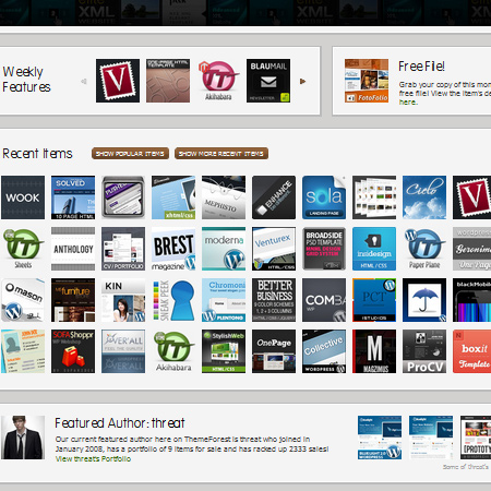 Download: Portfolio WPESP Theme