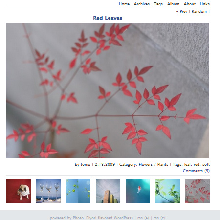 WORDPRESS PHOTOLOG THEME: PHOTO-BIYORI