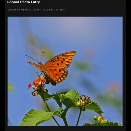 Wordpress Theme – Photo Blog