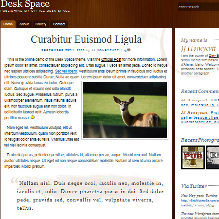 Desk Space WordPress Theme