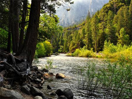 Yosemite falls wallpaper