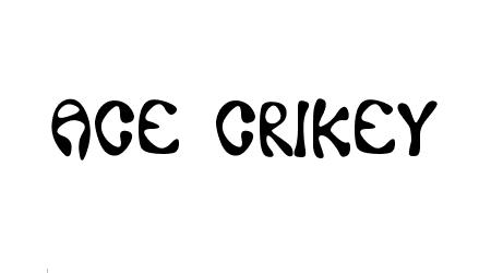 Ace Crikey font