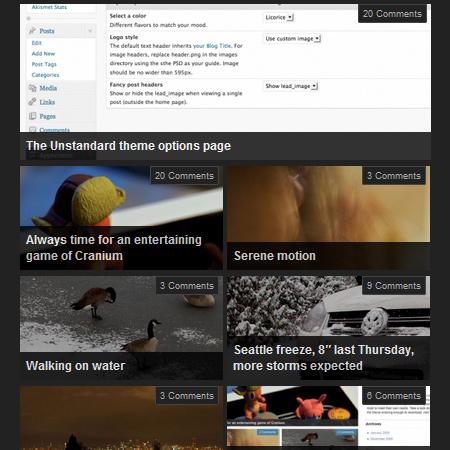 WordPress The Unstandard Download