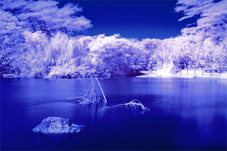 January Infrared 003