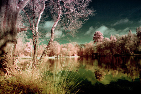 Infrared Waterscape