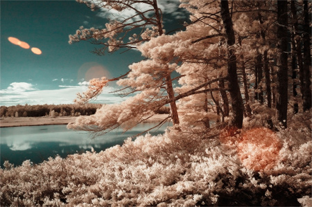 Stockton Infrared
