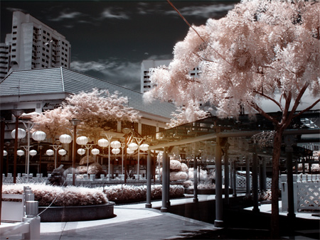 Infrared Series-Chinatown 3
