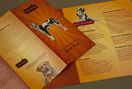 Dog Trainer Brochure
