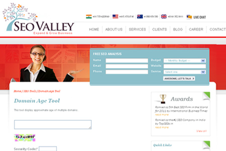 SEOValley.com - Domain Age Tool