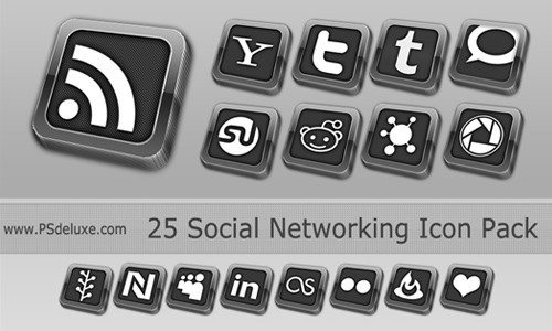 Elegant Social Network Icon