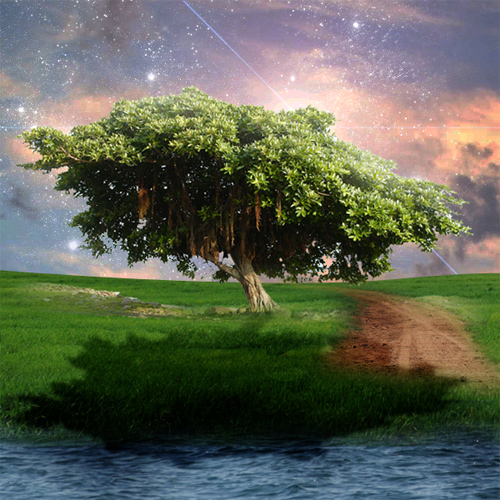 Create a Peaceful Nature Photo Manipulation in Photoshop