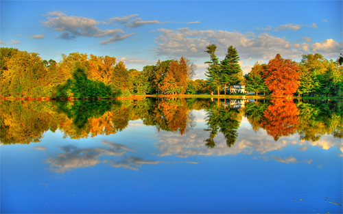Amazing Autumn Scene