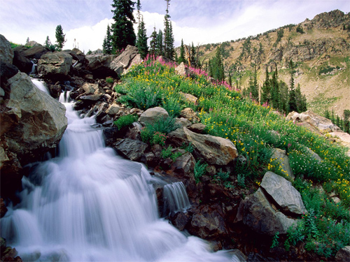 waterfalls in the hills