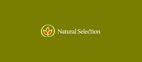 Natural Selection (logo 2)