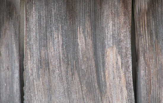 00019 - Weathered Wood