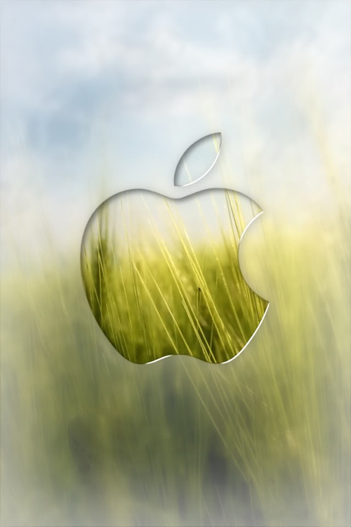 Apple Wheat Field
