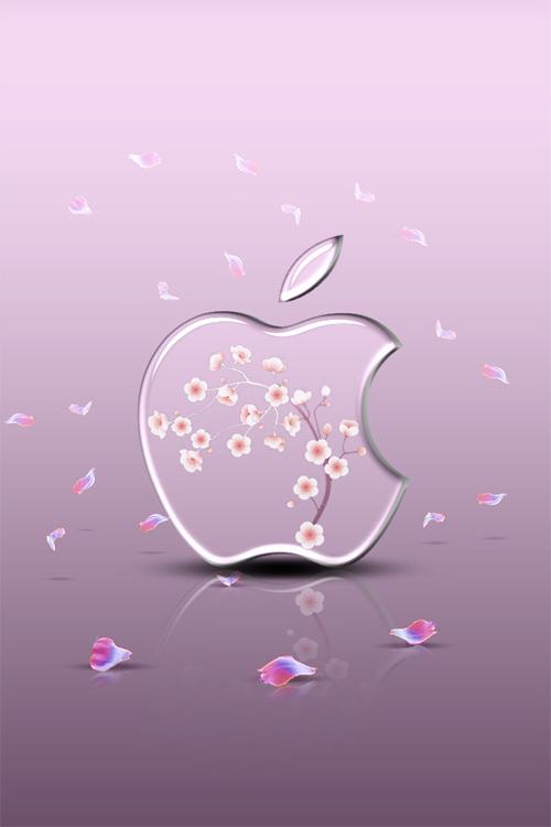 iphone Wallpaper - Sakura