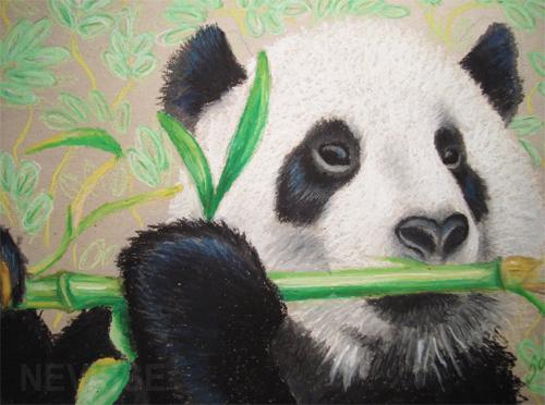 Oil pastel panda