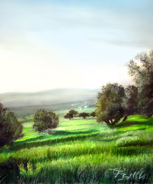 olive trees in my area, pastel